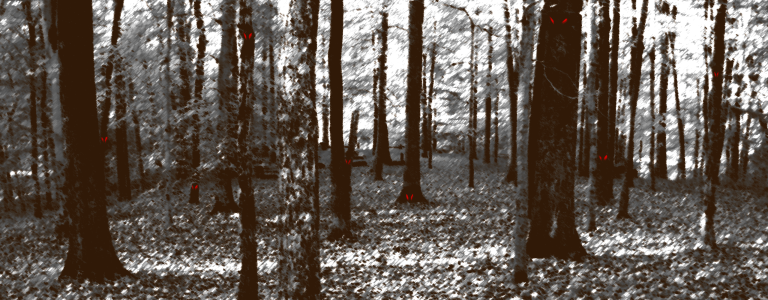A deciduous forest in greyscale, with a pair of eyes peering at you from one of the trees.