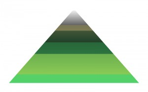 A diagram of the colors of the forest theme.